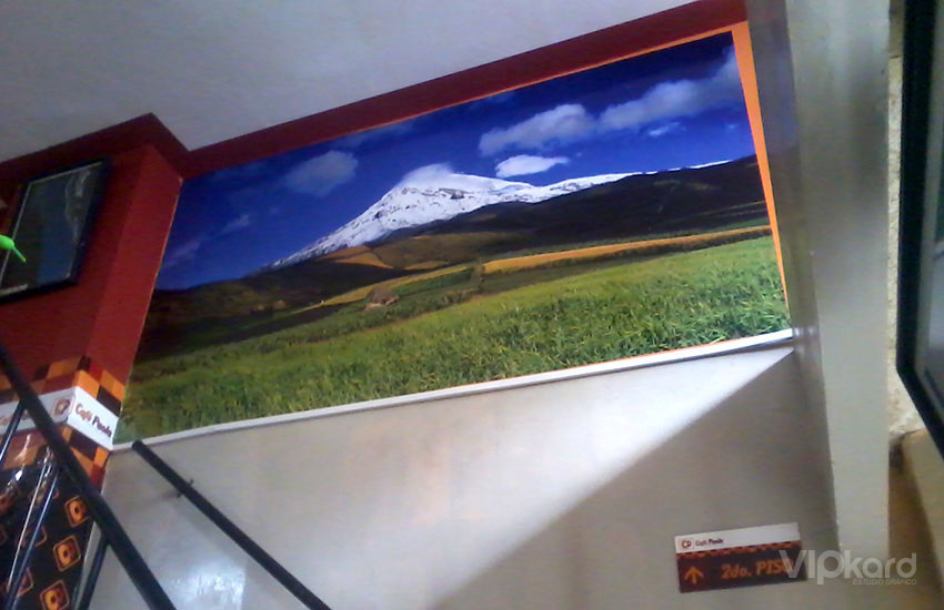 Vinil decorativo para interiores 2 - Café Paola